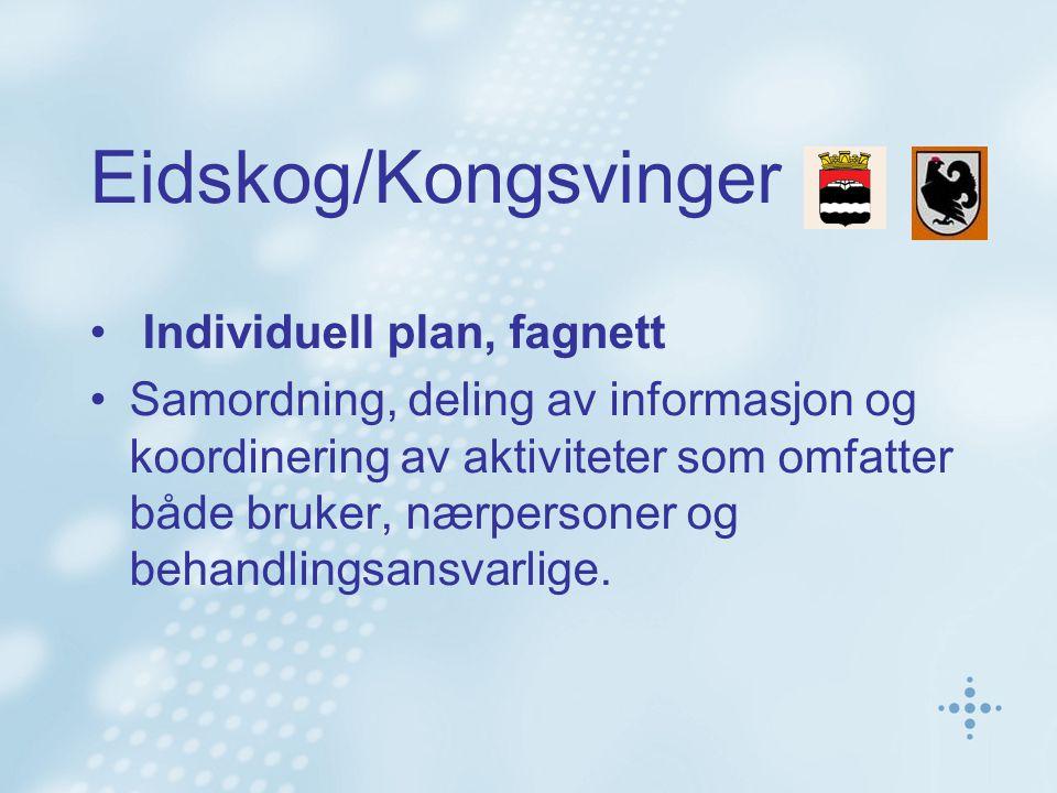 Eidskog/Kongsvinger Individuell plan, fagnett