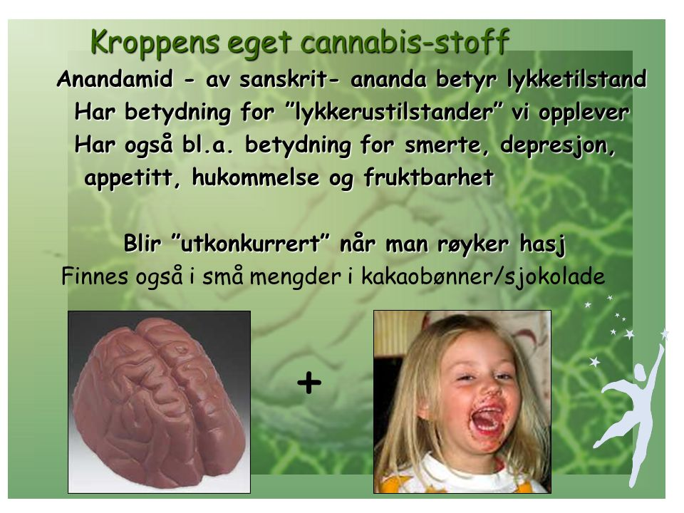 + Kroppens eget cannabis-stoff