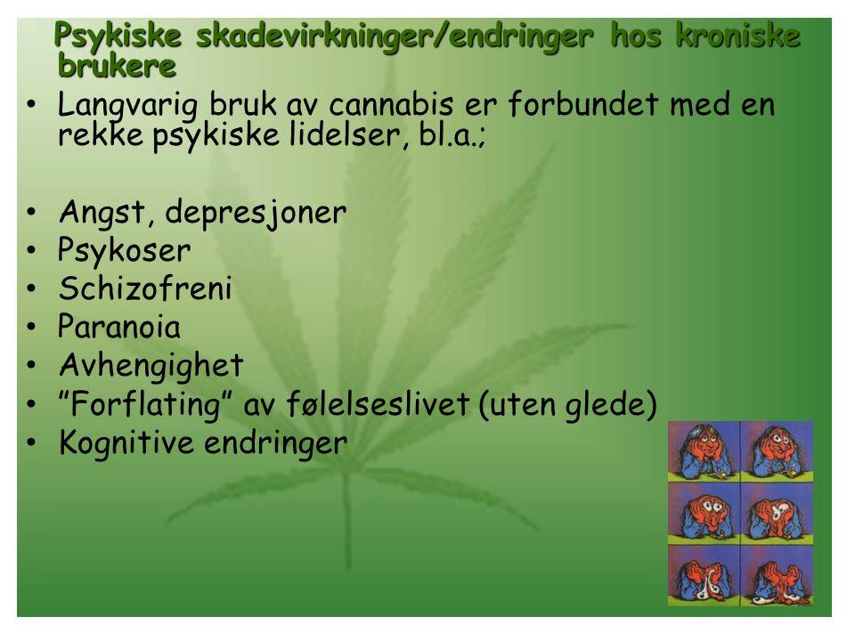 Psykiske skadevirkninger/endringer hos kroniske brukere