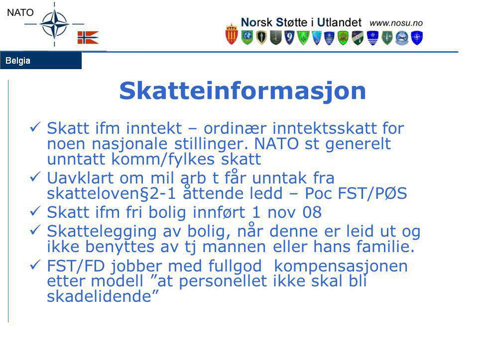 Skatteinformasjon Skatt ifm inntekt – ordinær inntektsskatt for noen nasjonale stillinger. NATO st generelt unntatt komm/fylkes skatt.
