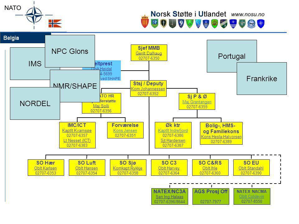 Bolig-, HMS- og Familiekons