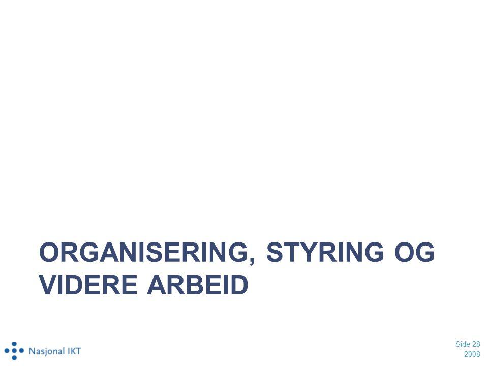 Organisering, styring og videre arbeid