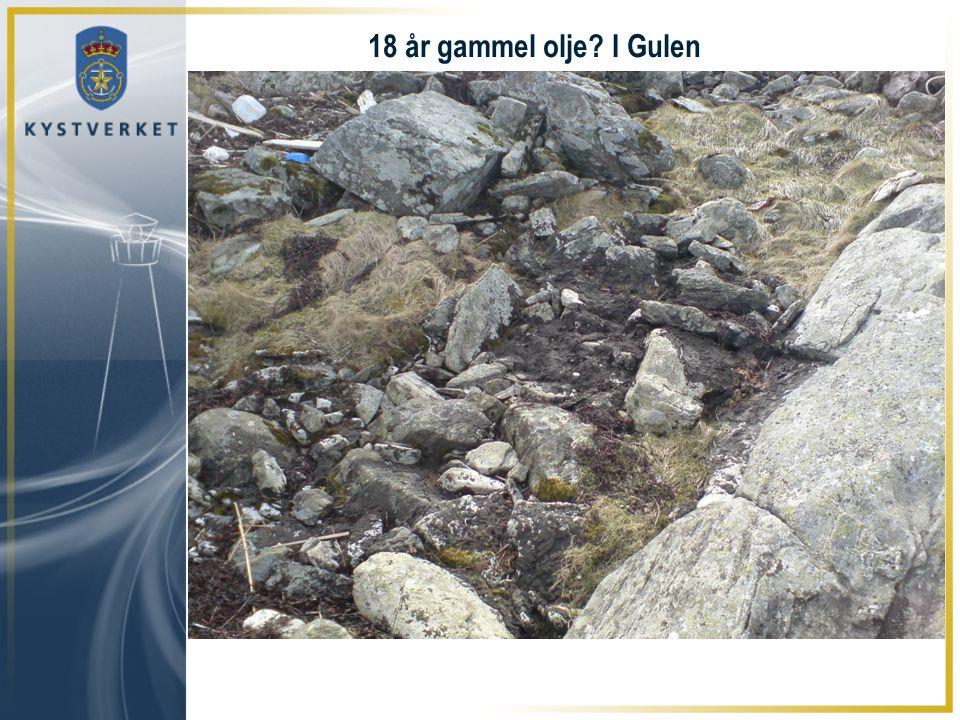 18 år gammel olje I Gulen