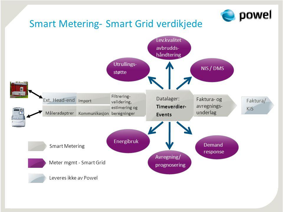 Smart Metering- Smart Grid verdikjede