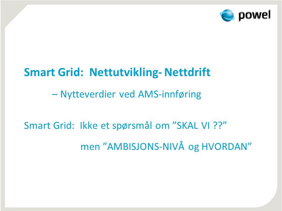 Smart Grid: Nettutvikling- Nettdrift