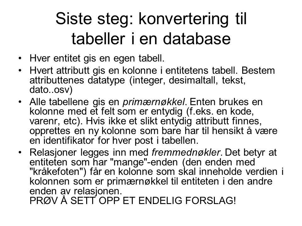 Siste steg: konvertering til tabeller i en database