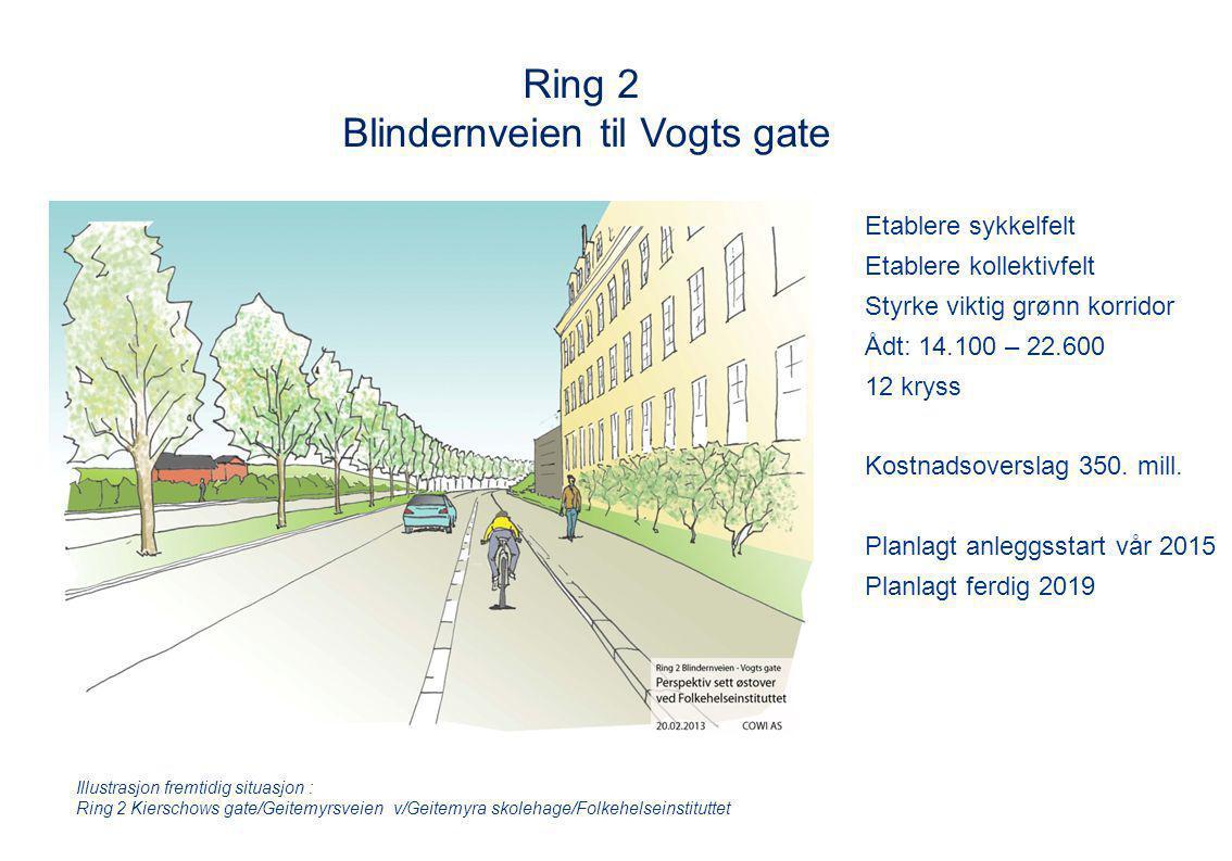 Blindernveien til Vogts gate