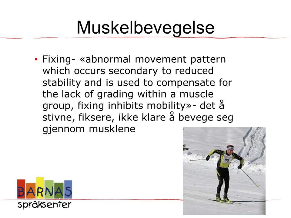 Muskelbevegelse