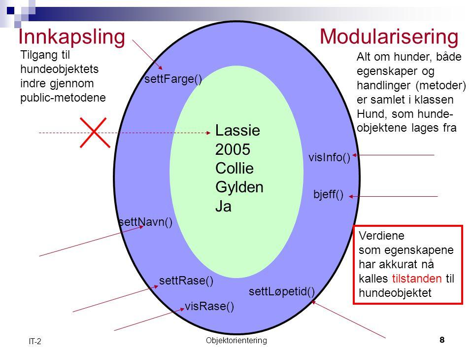 Innkapsling Modularisering Lassie 2005 Collie Gylden Ja Tilgang til