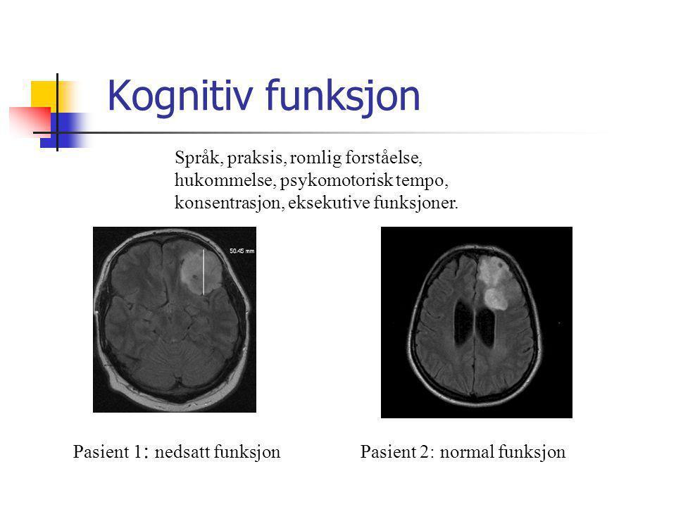 Kognitiv funksjon Språk, praksis, romlig forståelse,