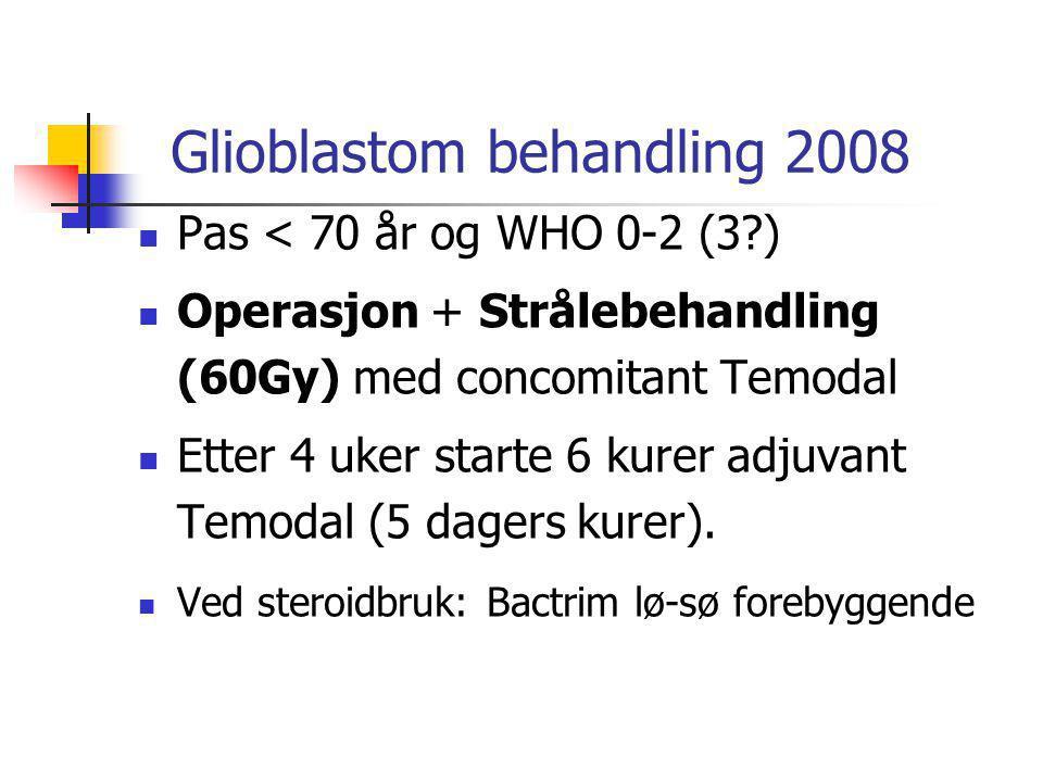 Glioblastom behandling 2008