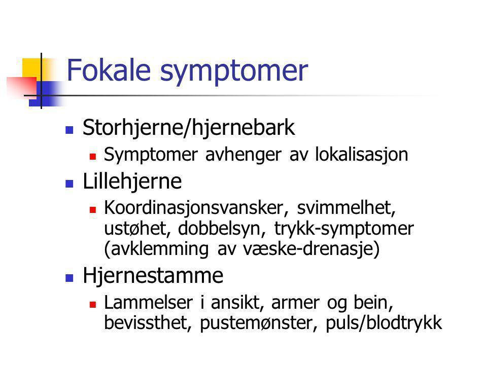 Fokale symptomer Storhjerne/hjernebark Lillehjerne Hjernestamme