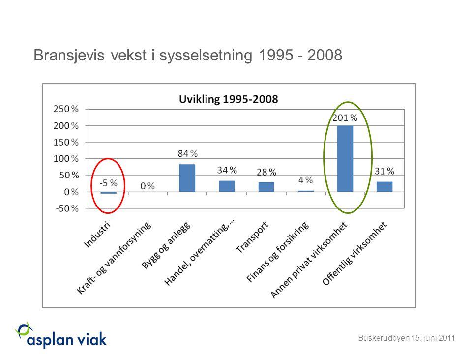 Bransjevis vekst i sysselsetning 1995 - 2008