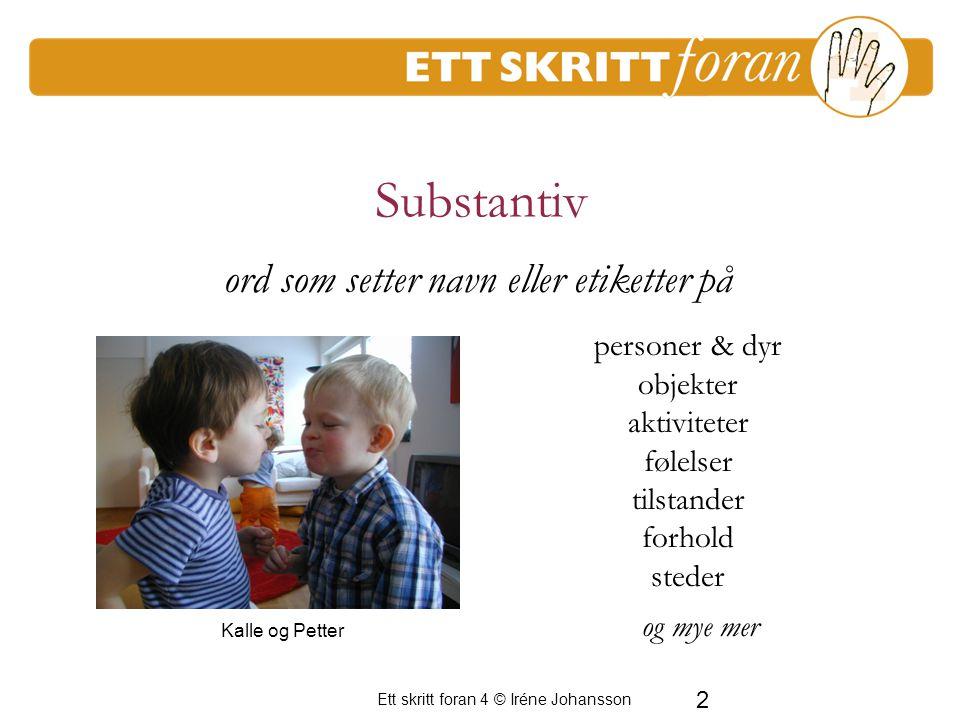 Substantiv ord som setter navn eller etiketter på