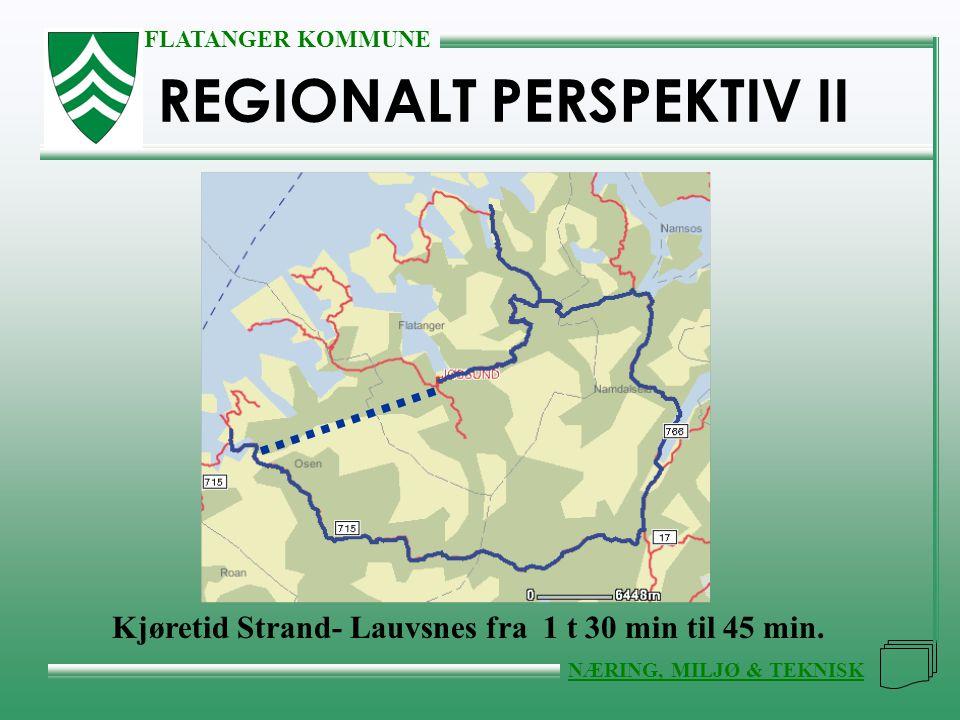 REGIONALT PERSPEKTIV II
