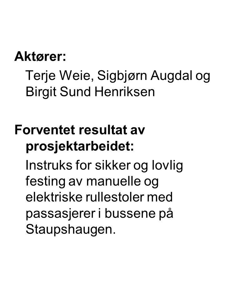 Aktører: Terje Weie, Sigbjørn Augdal og Birgit Sund Henriksen. Forventet resultat av prosjektarbeidet: