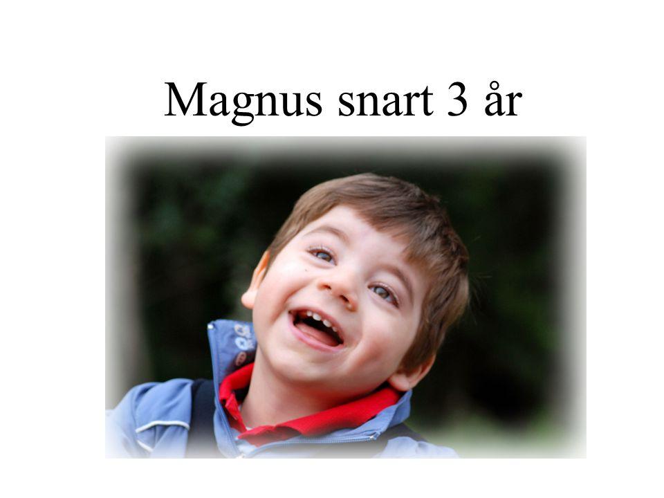 Magnus snart 3 år