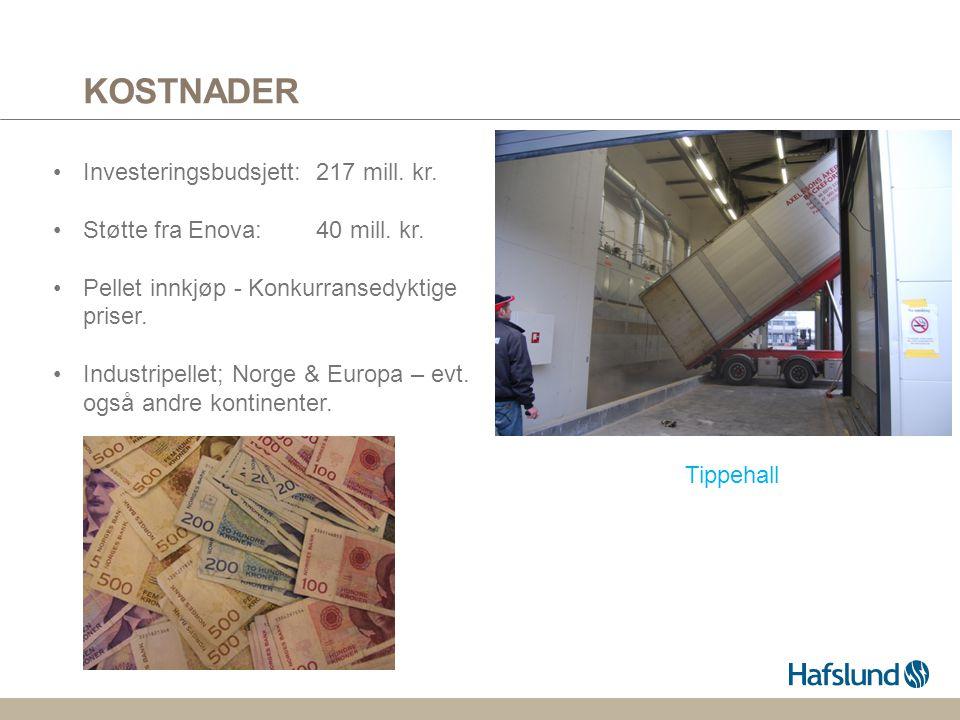 KOSTNADER Investeringsbudsjett: 217 mill. kr.