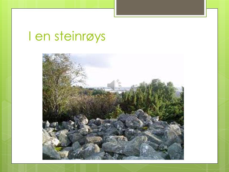 I en steinrøys