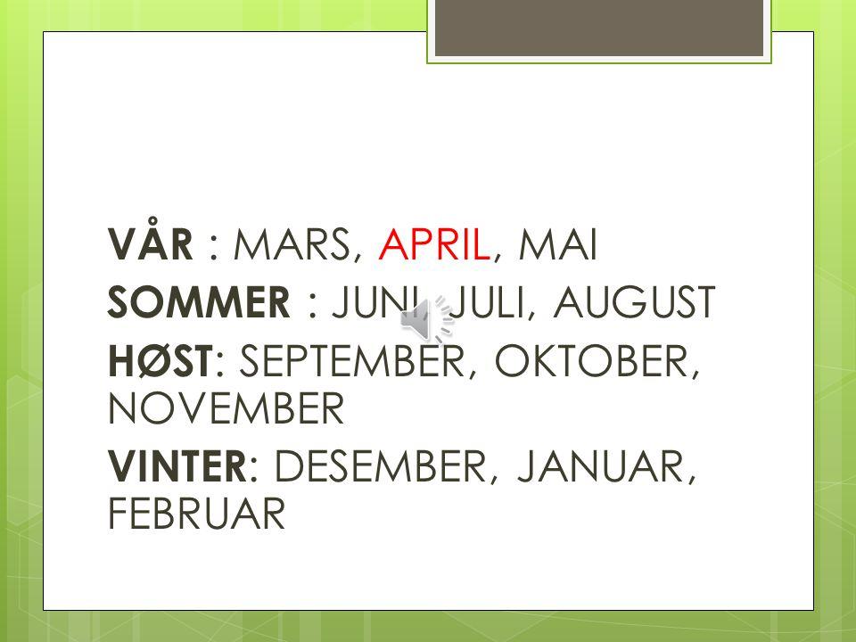 VÅR : MARS, APRIL, MAI SOMMER : JUNI, JULI, AUGUST HØST: SEPTEMBER, OKTOBER, NOVEMBER VINTER: DESEMBER, JANUAR, FEBRUAR