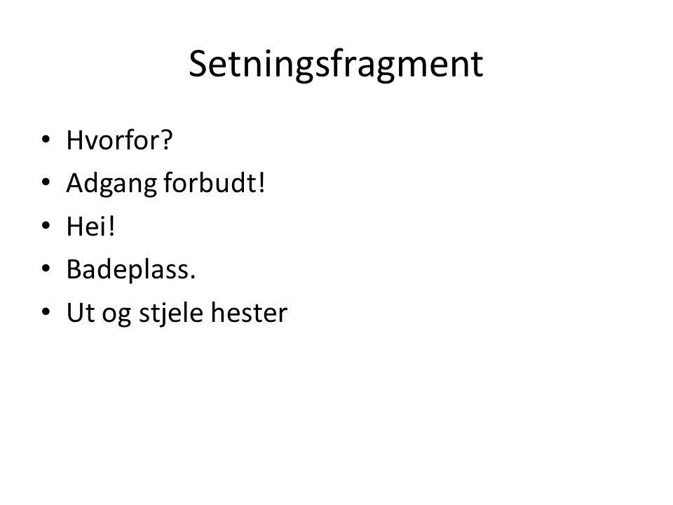 Setningsfragment Hvorfor Adgang forbudt! Hei! Badeplass.