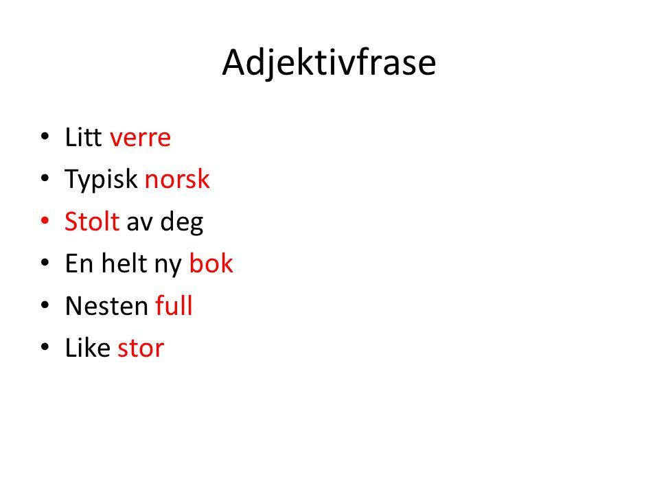 Adjektivfrase Litt verre Typisk norsk Stolt av deg En helt ny bok