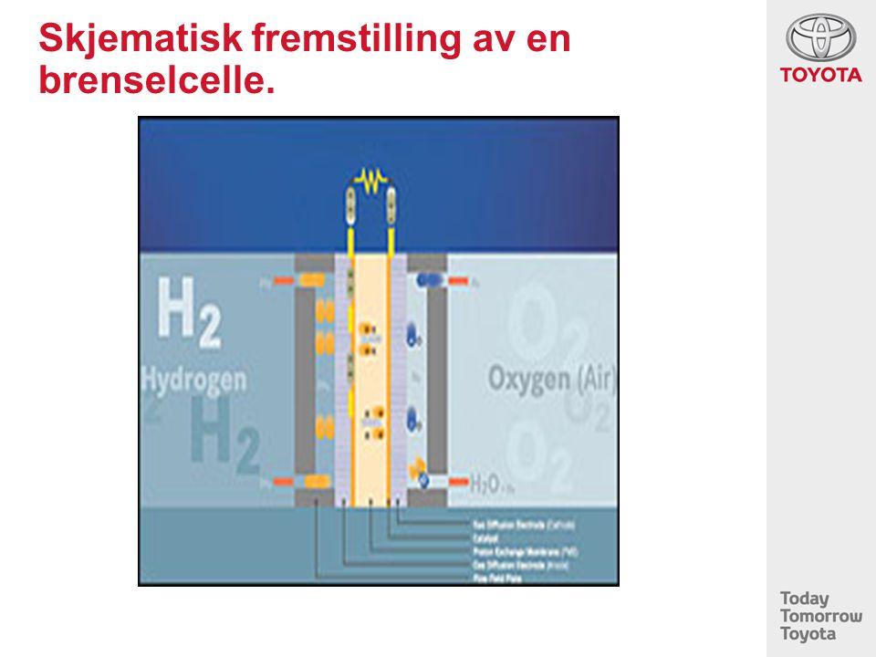 Skjematisk fremstilling av en brenselcelle.