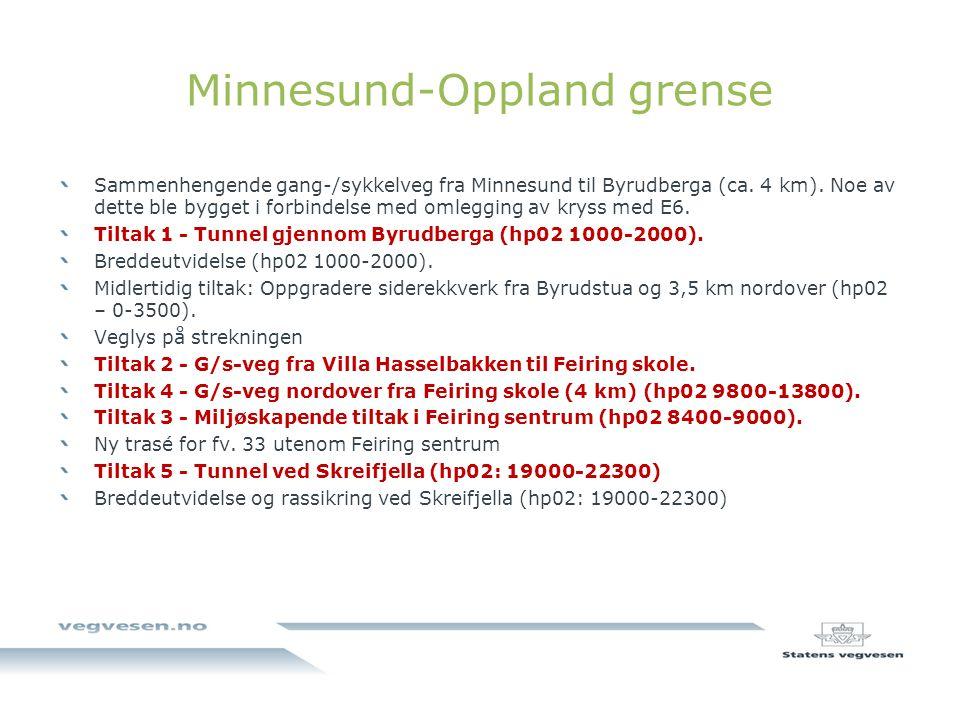 Minnesund-Oppland grense