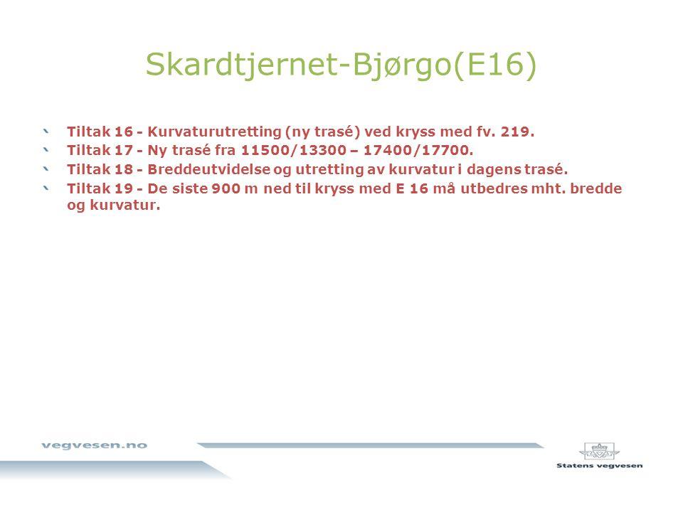 Skardtjernet-Bjørgo(E16)