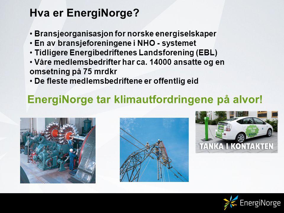 EnergiNorge tar klimautfordringene på alvor!