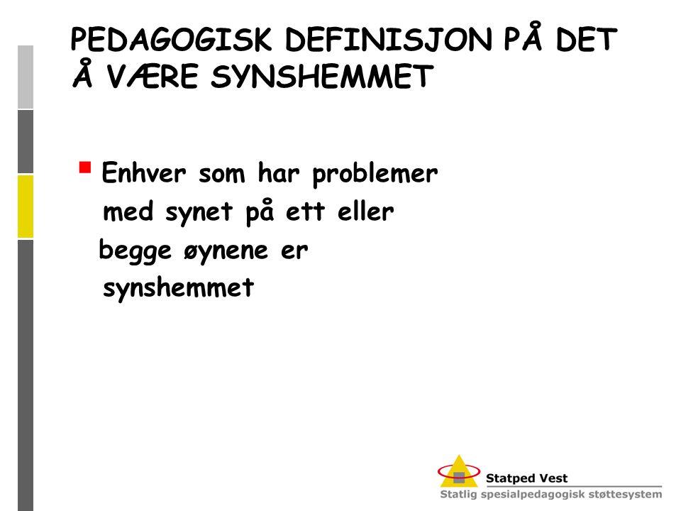 PEDAGOGISK DEFINISJON PÅ DET Å VÆRE SYNSHEMMET