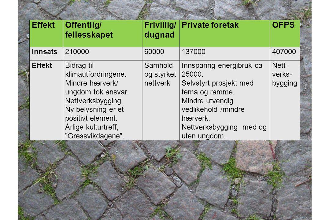 Offentlig/ fellesskapet Frivillig/dugnad Private foretak OFPS