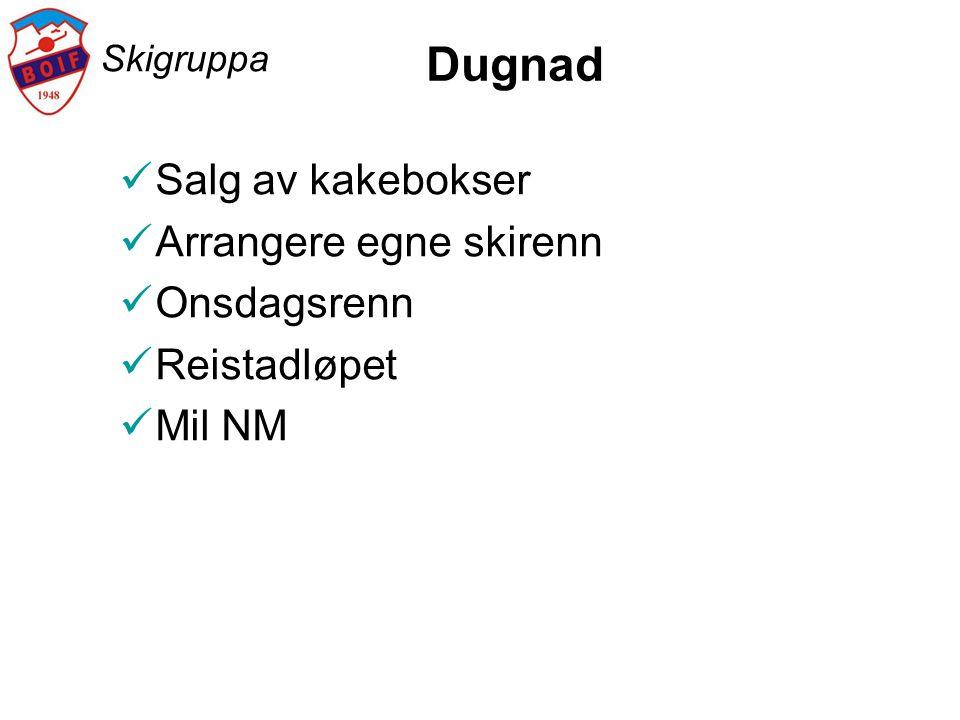 Dugnad Salg av kakebokser Arrangere egne skirenn Onsdagsrenn