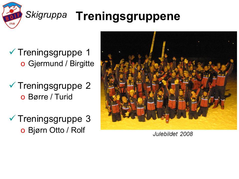Treningsgruppene Skigruppa Treningsgruppe 1 Treningsgruppe 2