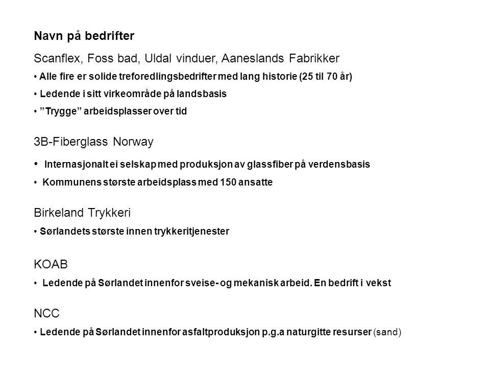 Scanflex, Foss bad, Uldal vinduer, Aaneslands Fabrikker
