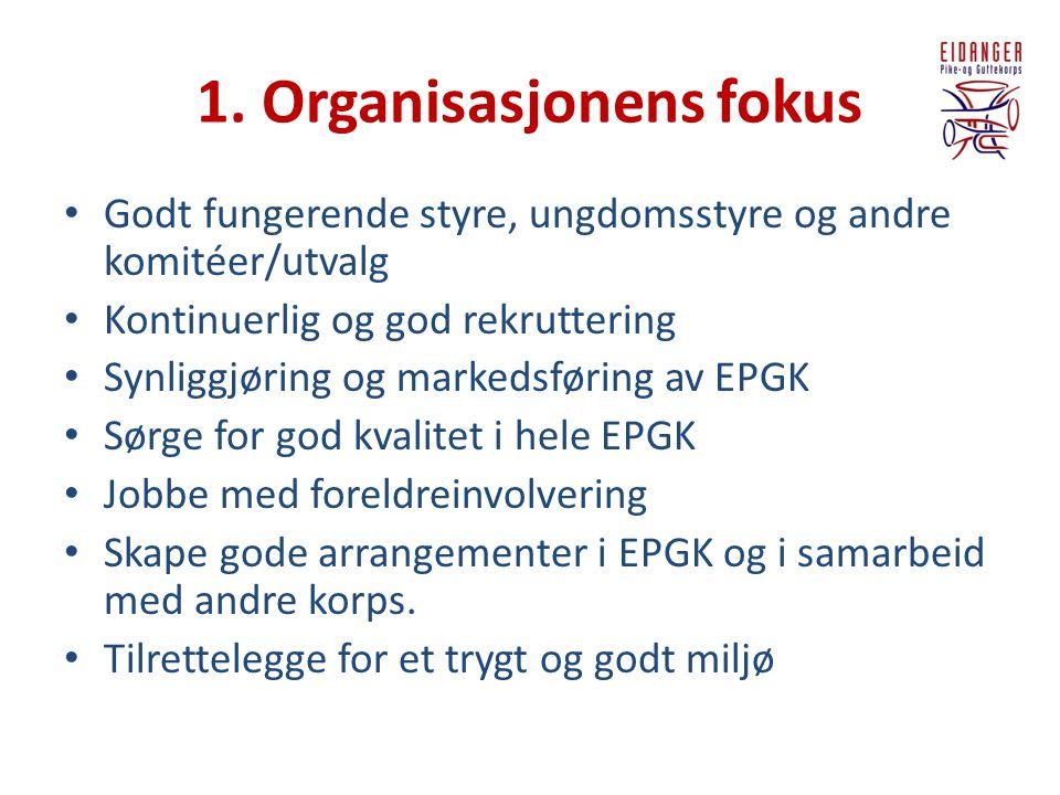 1. Organisasjonens fokus