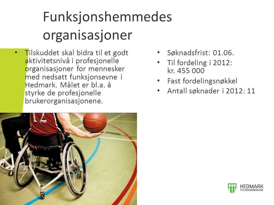 Funksjonshemmedes organisasjoner