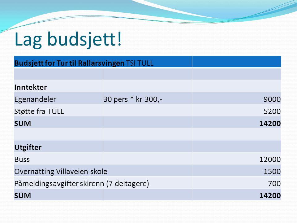Lag budsjett! Budsjett for Tur til Rallarsvingen TSI TULL Inntekter