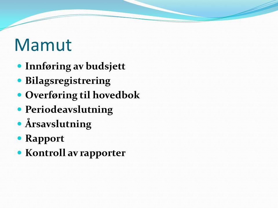 Mamut Innføring av budsjett Bilagsregistrering Overføring til hovedbok