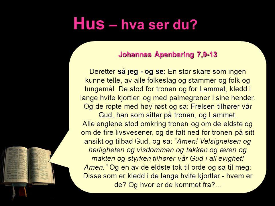 Hus – hva ser du Johannes Åpenbaring 7,9-13