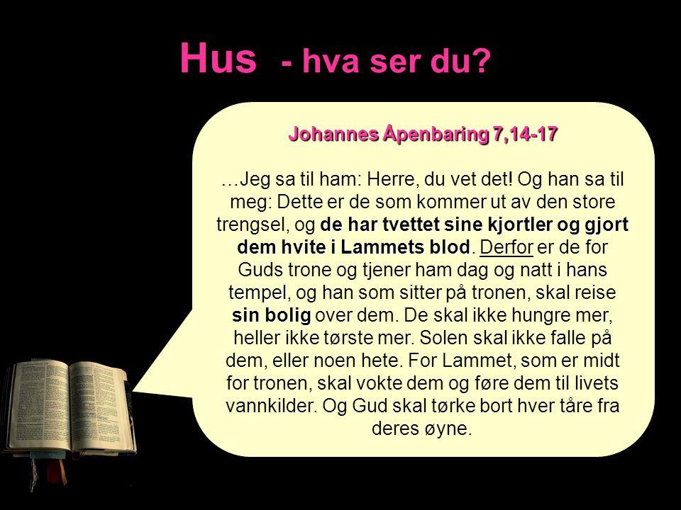 Hus - hva ser du Johannes Åpenbaring 7,14-17