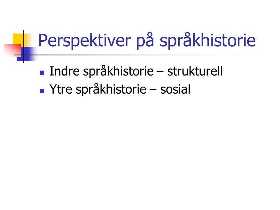 Perspektiver på språkhistorie