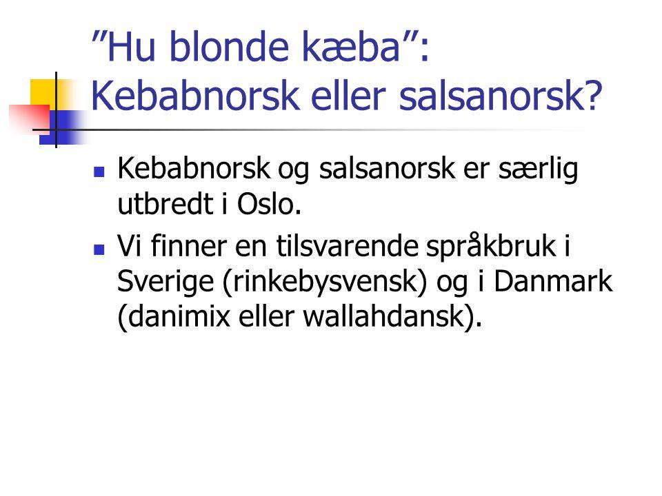 Hu blonde kæba : Kebabnorsk eller salsanorsk