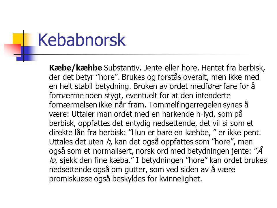 Kebabnorsk
