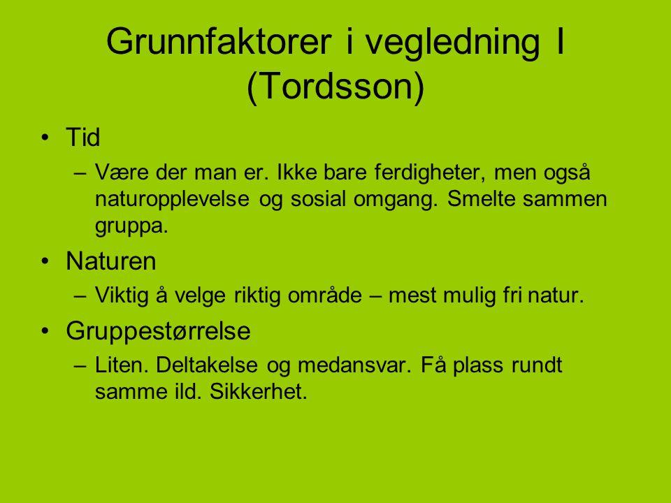 Grunnfaktorer i vegledning I (Tordsson)