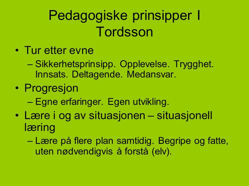 Pedagogiske prinsipper I Tordsson