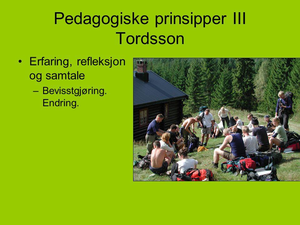 Pedagogiske prinsipper III Tordsson