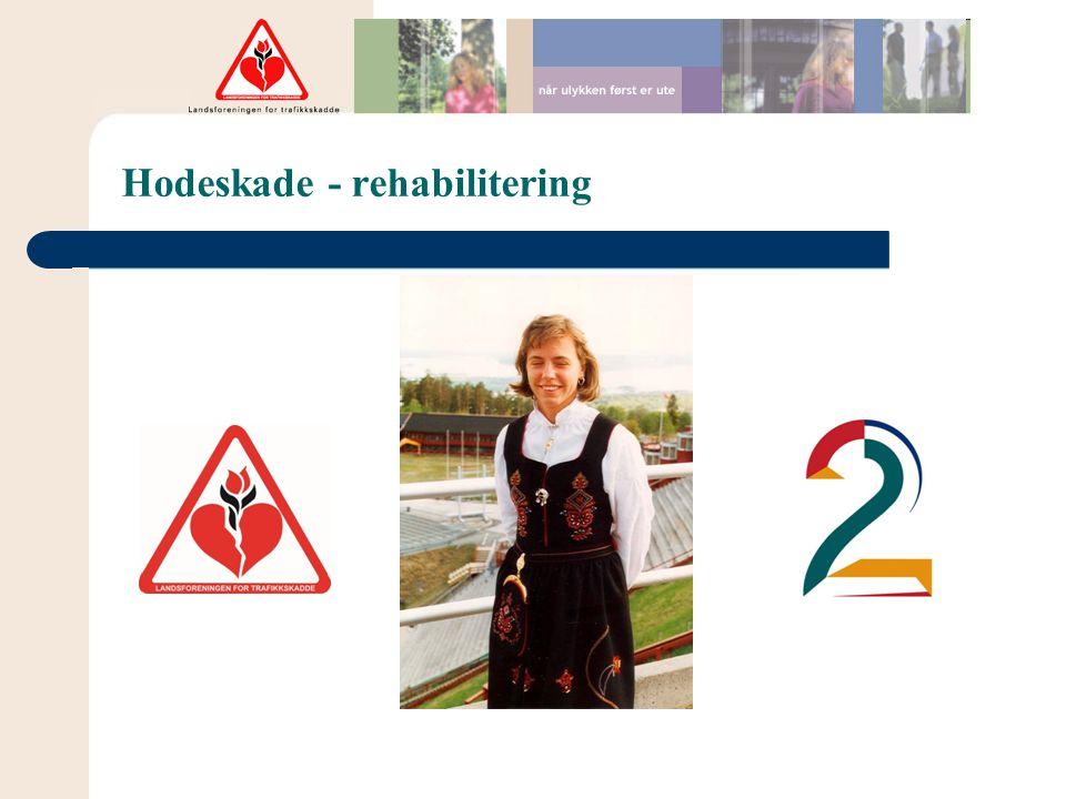 Hodeskade - rehabilitering