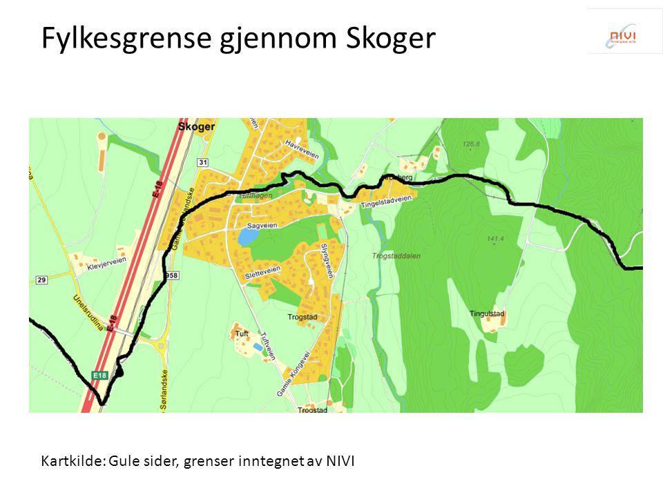 Fylkesgrense gjennom Skoger