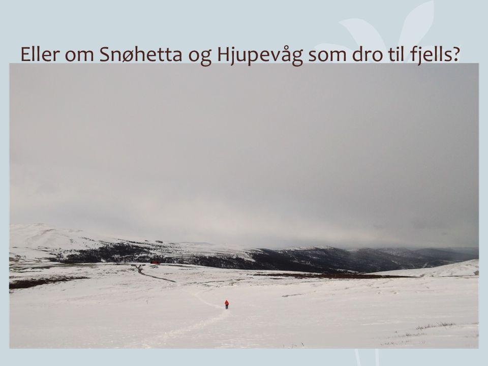 Eller om Snøhetta og Hjupevåg som dro til fjells